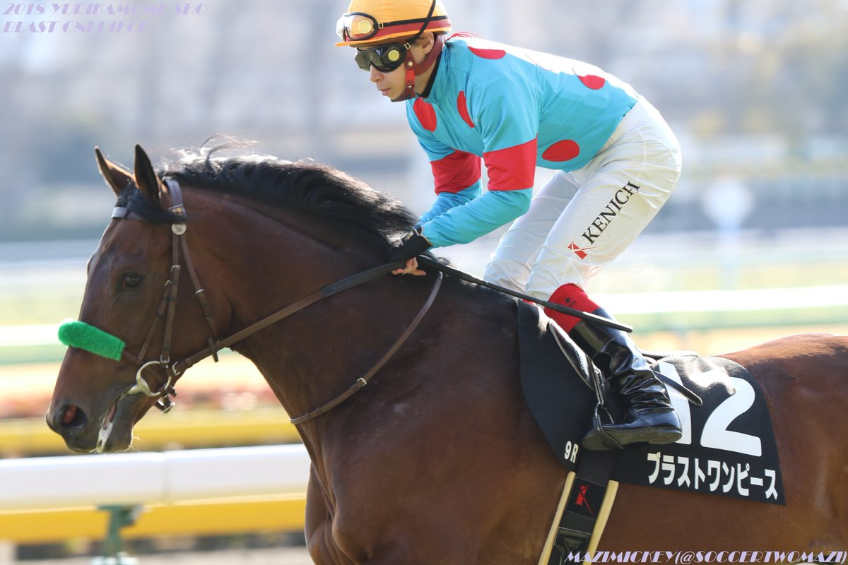 毎日杯2018の予想オッズ・人気と出走予定馬は?皐月賞への最終東上便を展望