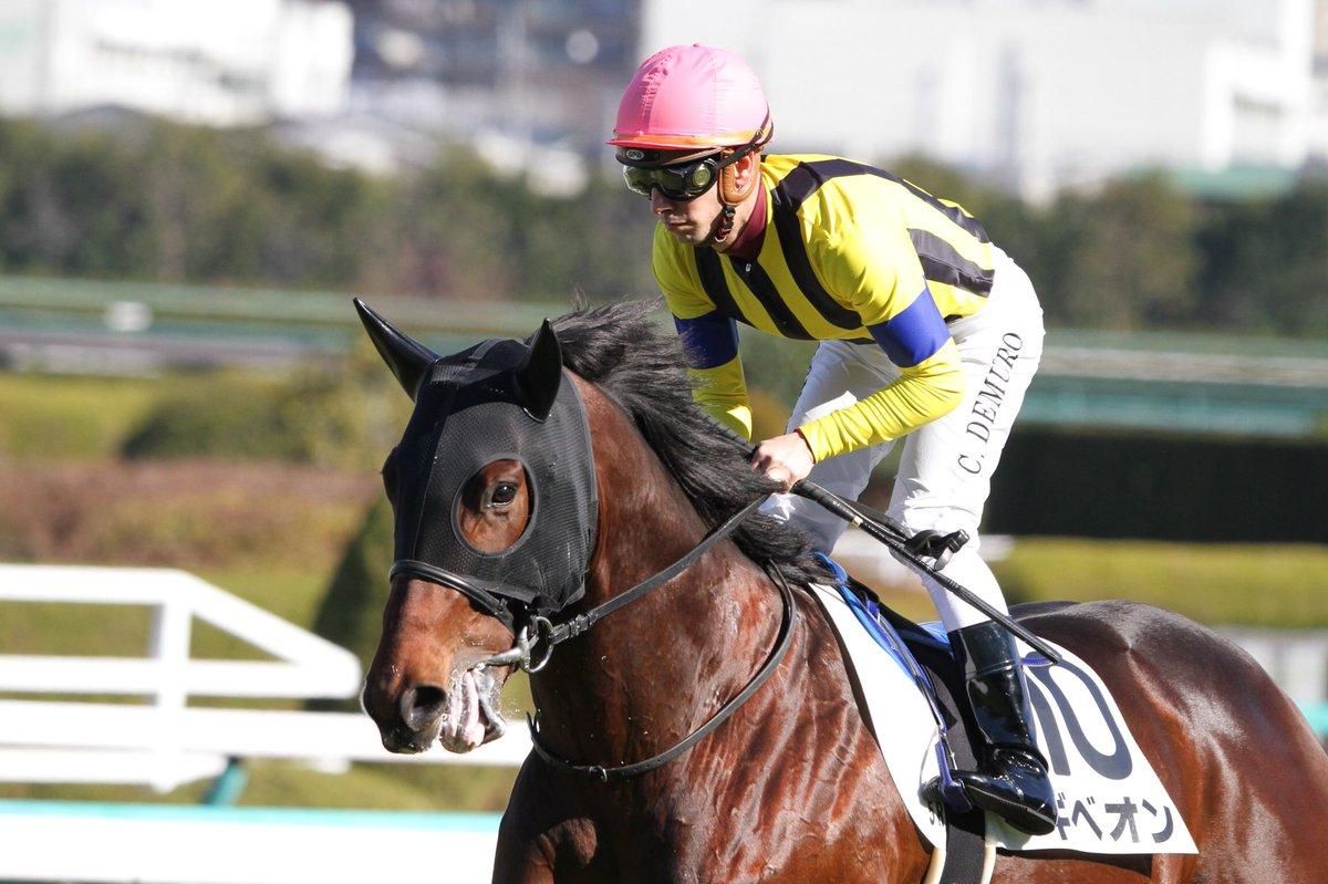 中日新聞杯2018の競馬予想分析!3つのデータから導く危険な人気馬