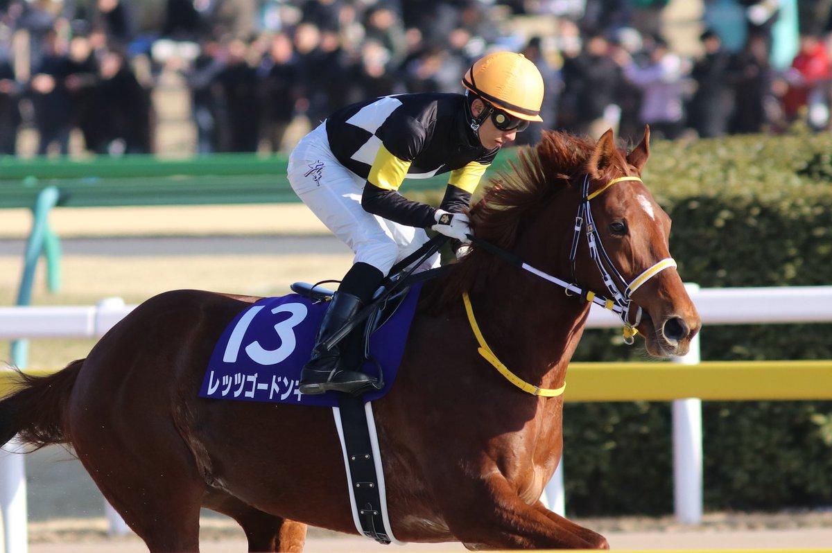 阪急杯2019の最新予想オッズ!日程・出走予定馬と人気の傾向は?/JRA