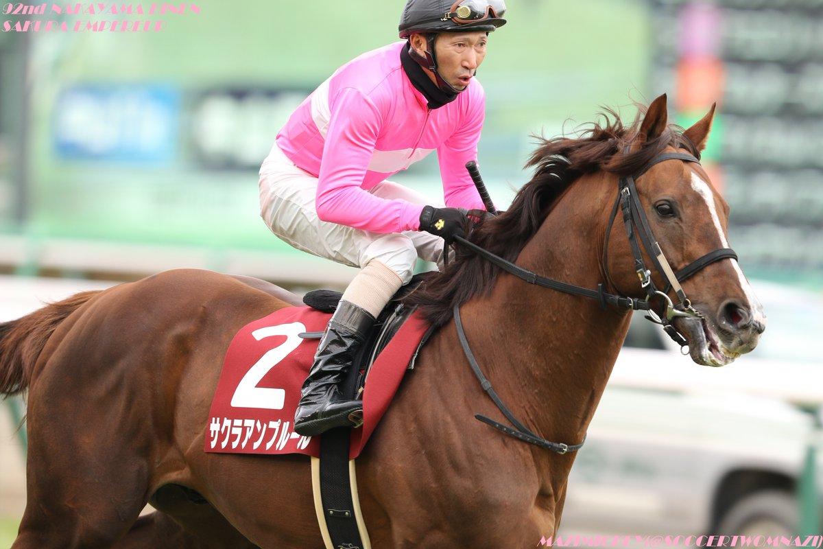 札幌記念2018の競馬予想分析!過去の血統と種牡馬の共通点とは?