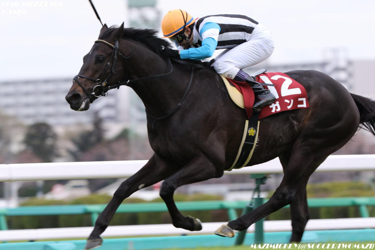 天皇賞春2018の競馬予想分析…大駆けへ?ガンコ飛躍への3要素