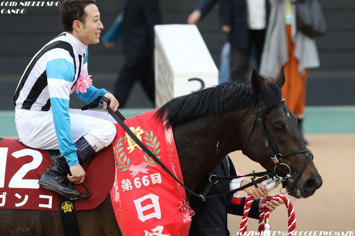 日経賞2019の競馬予想データ分析!過去10年の傾向は?