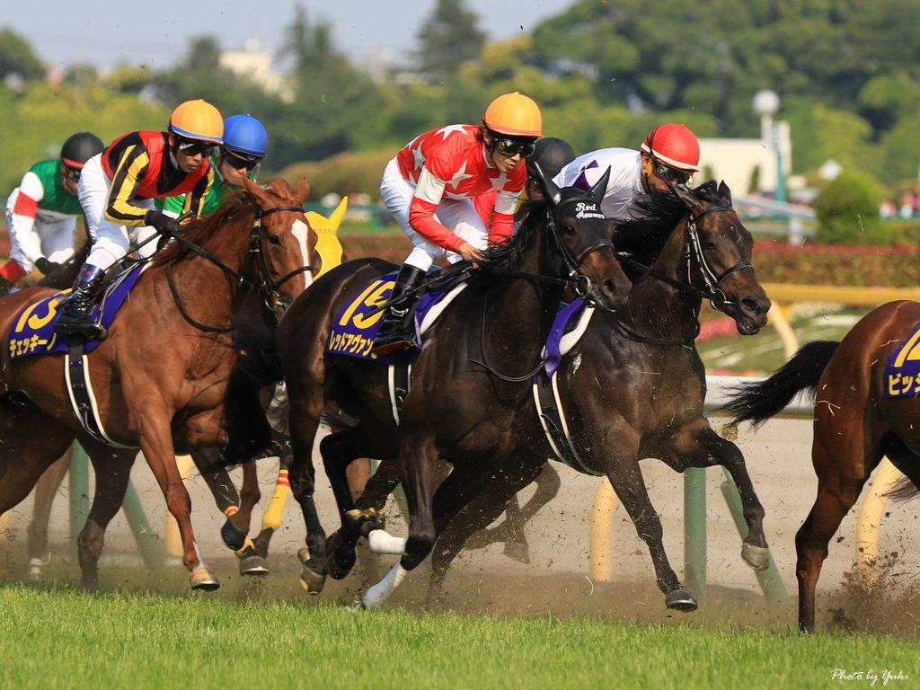 阪神牝馬S2018の競馬予想分析、結果発表!回収率約210のデータ該当馬とは?