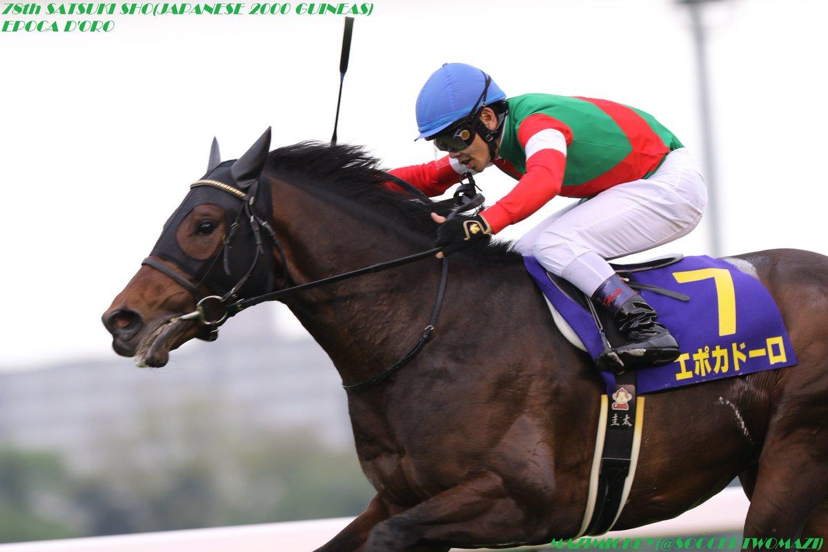 日本ダービー2018の競馬予想分析、結果発表!回収率200のデータ該当馬とは?