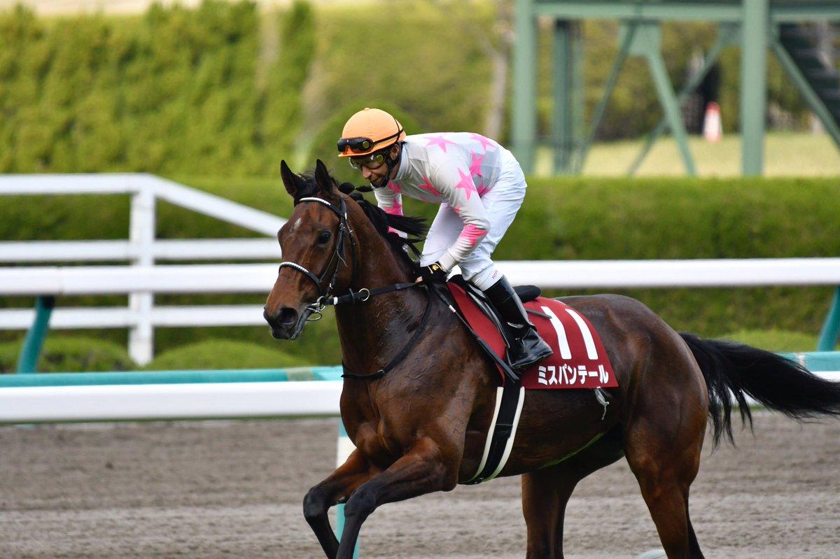ミスパンテールの勝因、リスグラシューの敗因は?阪神牝馬S2018回顧