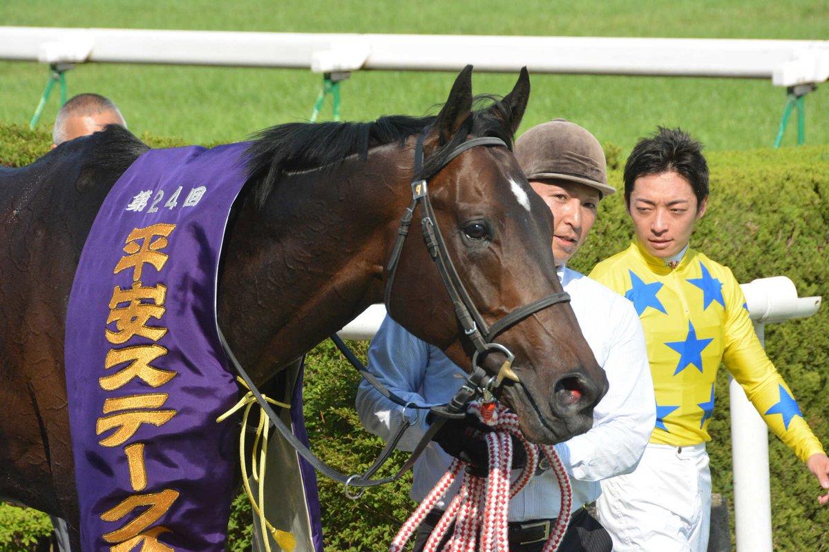 平安S2018の競馬予想分析…過去の血統と種牡馬の共通点は?
