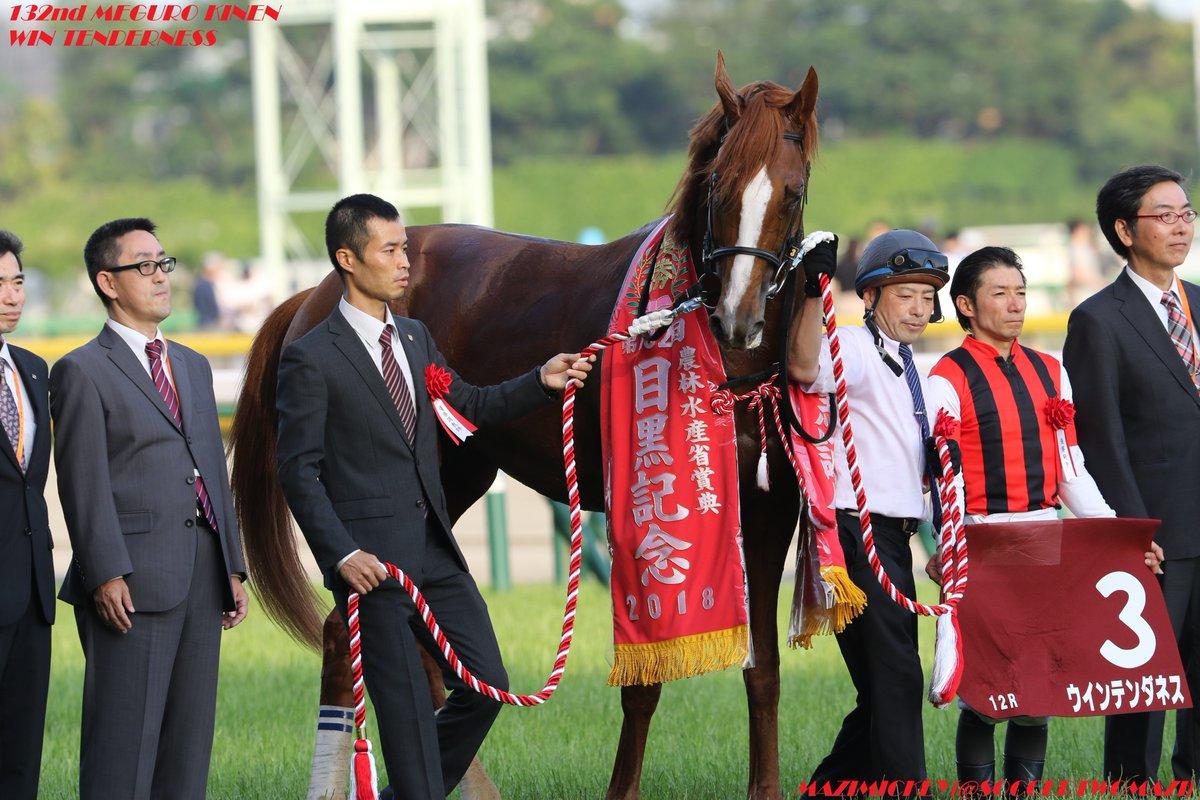 日経新春杯2019の競馬予想分析!3つのデータから導く穴馬候補