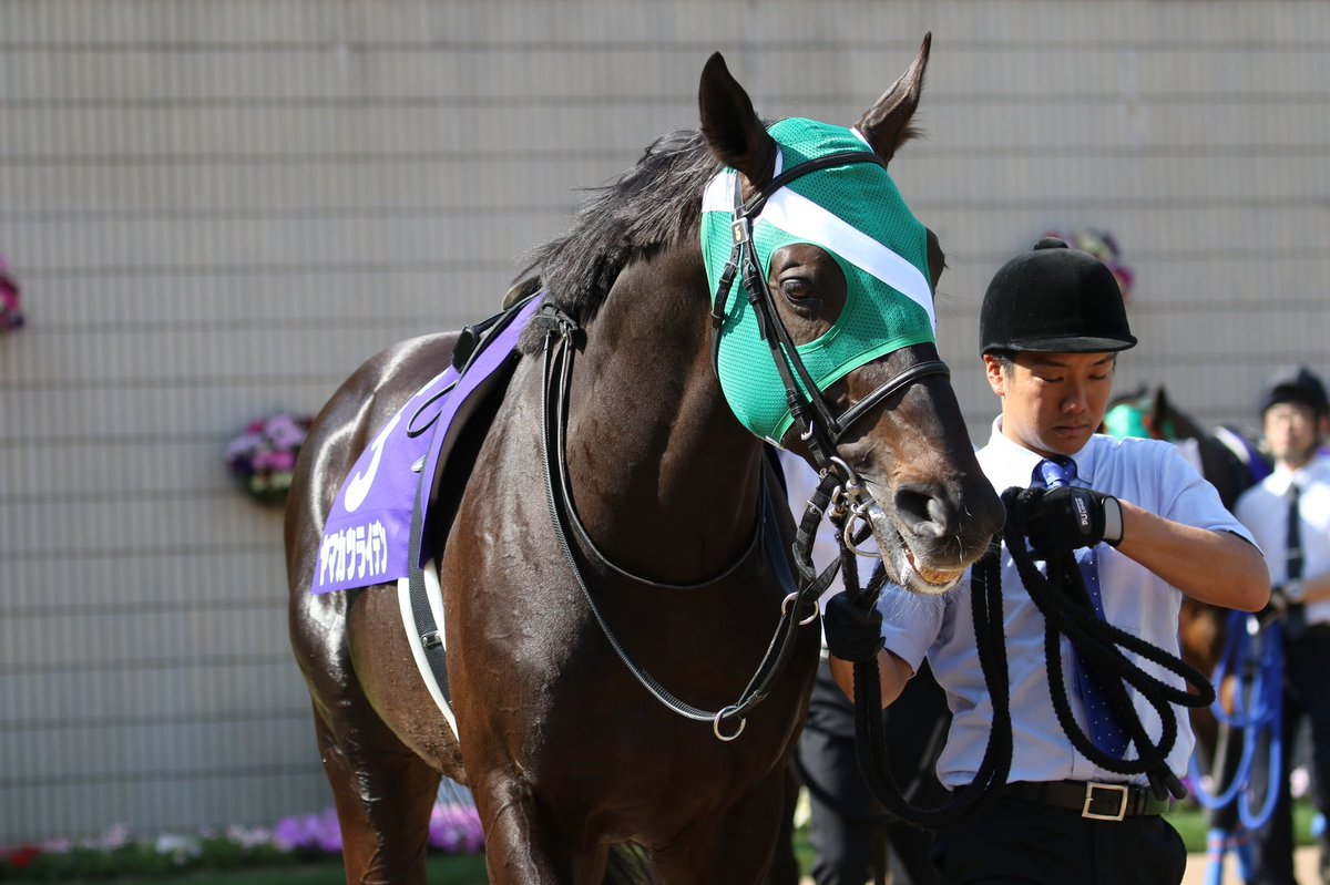 鳴尾記念2018の競馬予想分析、結果発表!回収率約230のデータ該当馬は?
