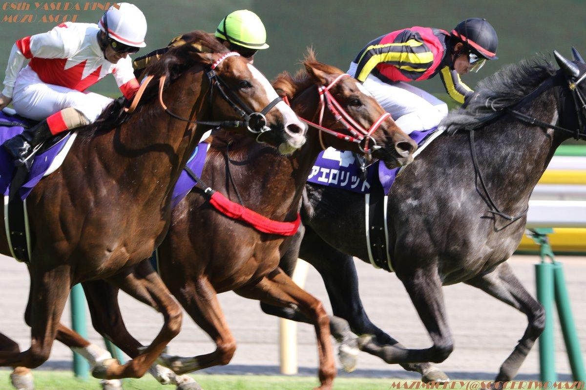 スワンS2018の競馬予想分析!3つのデータから導く危険な人気馬