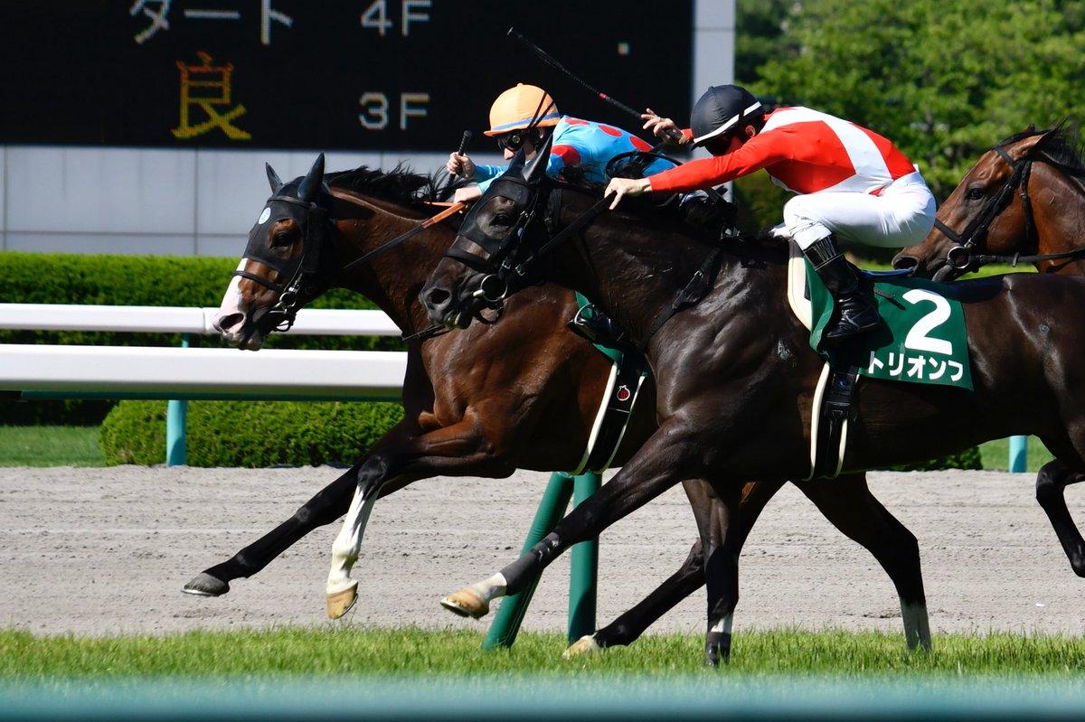 小倉記念2018の競馬予想分析!3つのデータから導く危険な人気馬