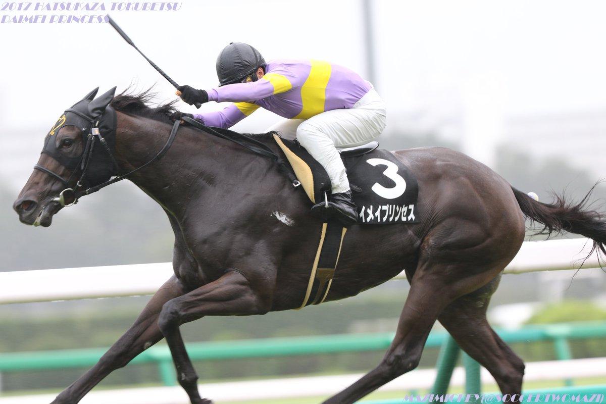 シルクロードS2019の最新予想オッズ!日程・出走予定馬と人気の傾向は?/JRA