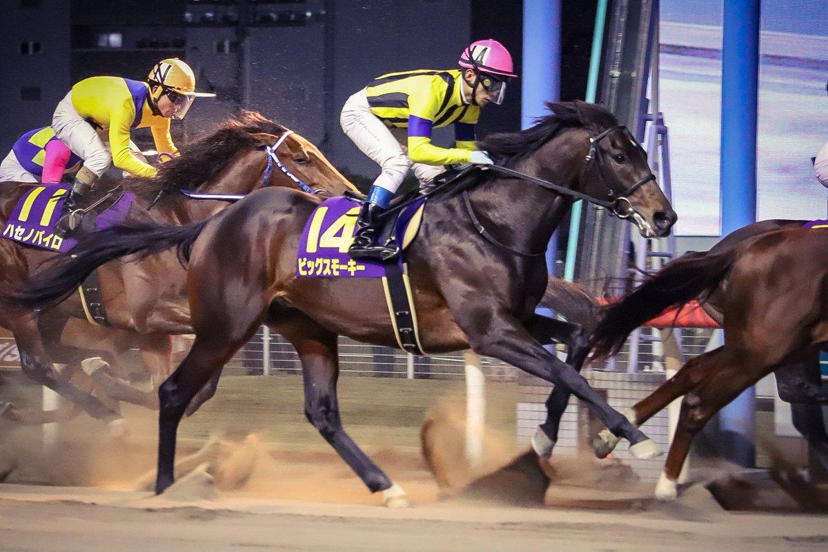 レパードS2018の競馬予想分析!データから導く穴馬候補とは?