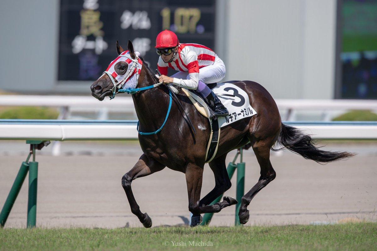 小倉2歳S2018の最新人気・予想オッズ、出走予定馬は?過去の歴代勝ち馬一覧
