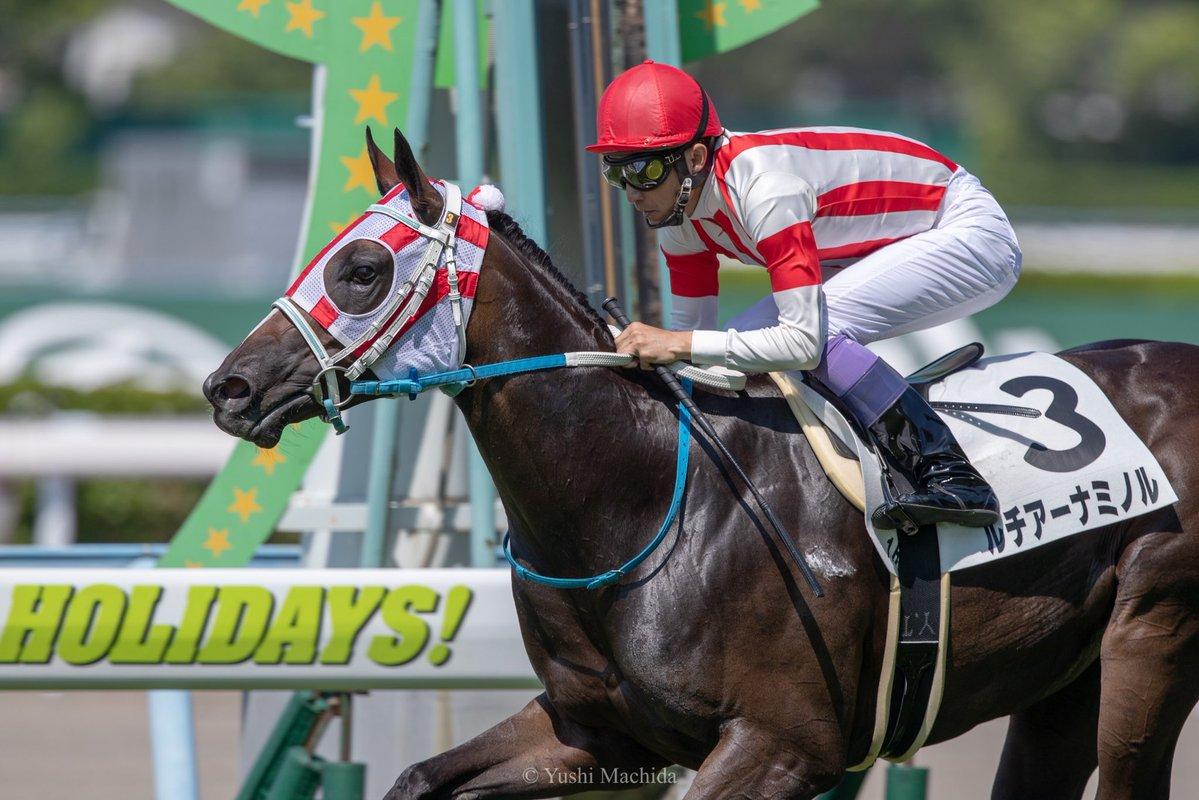 小倉2歳S2018の予想オッズ・人気と日程、出走予定馬と過去の傾向