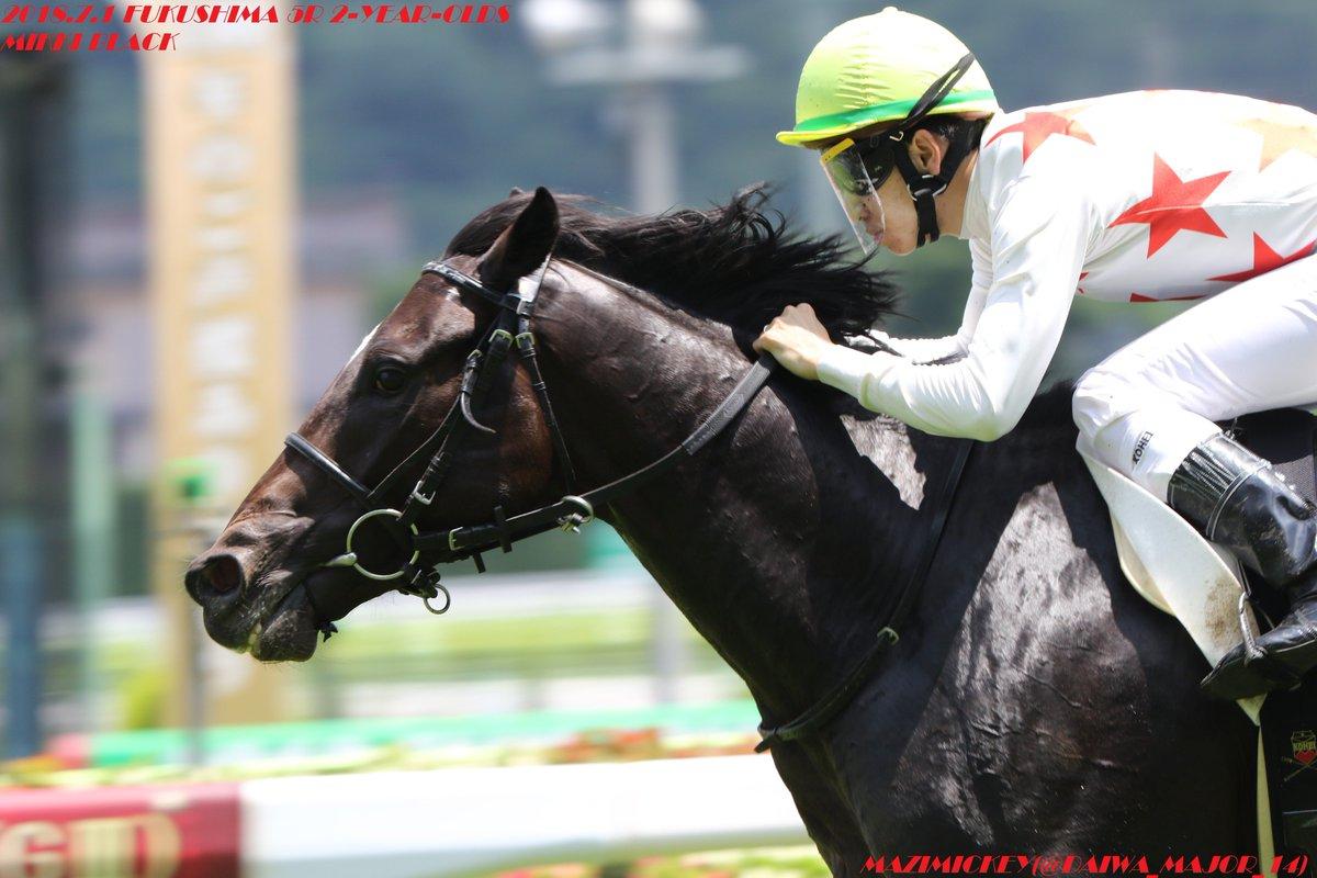 京都2歳S2018の競馬予想分析!過去の血統と種牡馬の共通点とは?