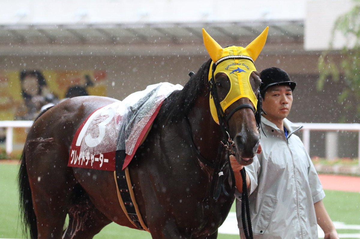 京阪杯2018の競馬予想分析!4つのデータから導く穴馬候補
