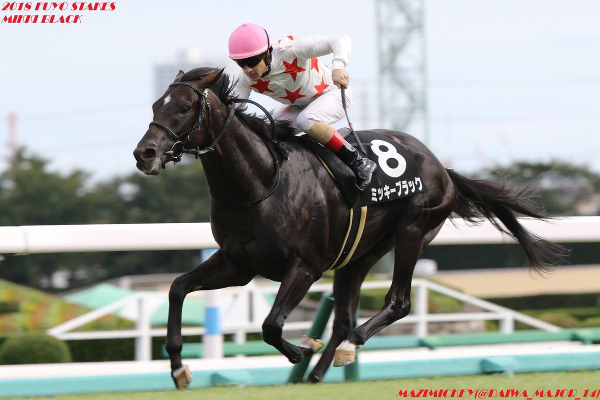 京都2歳S2018の競馬予想分析!5つのデータから導く勝ち馬候補