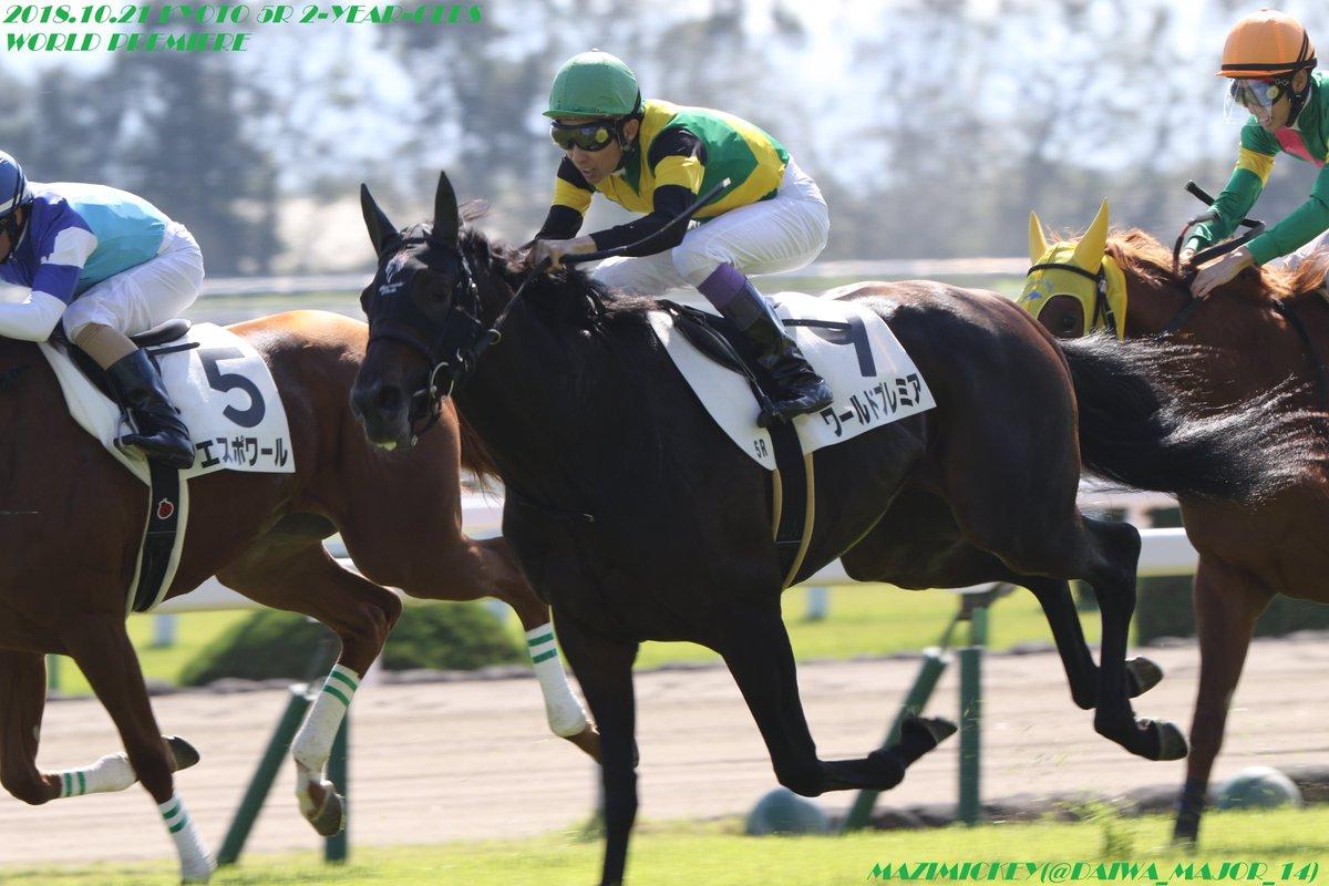 京都2歳S2018の予想オッズ・人気と出走予定馬は?中距離2歳重賞展望