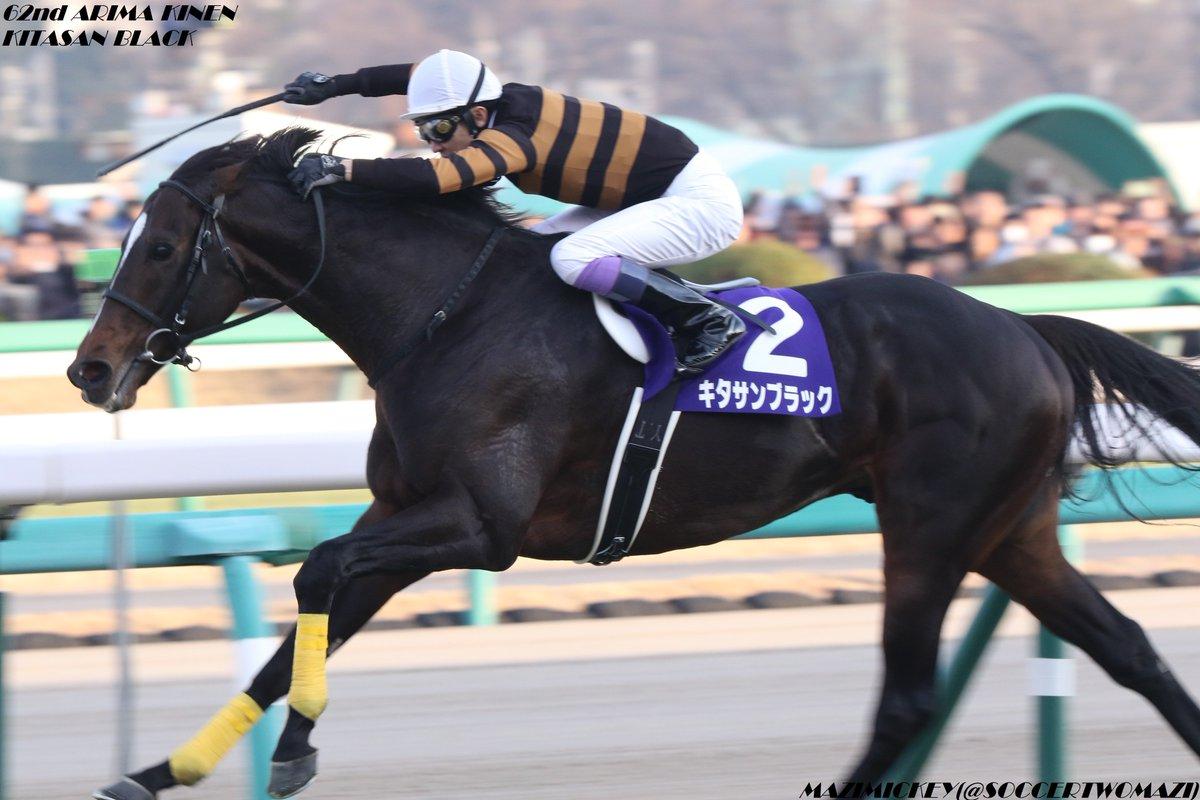 有馬記念2018の競馬予想分析!過去の血統と種牡馬の共通点とは?