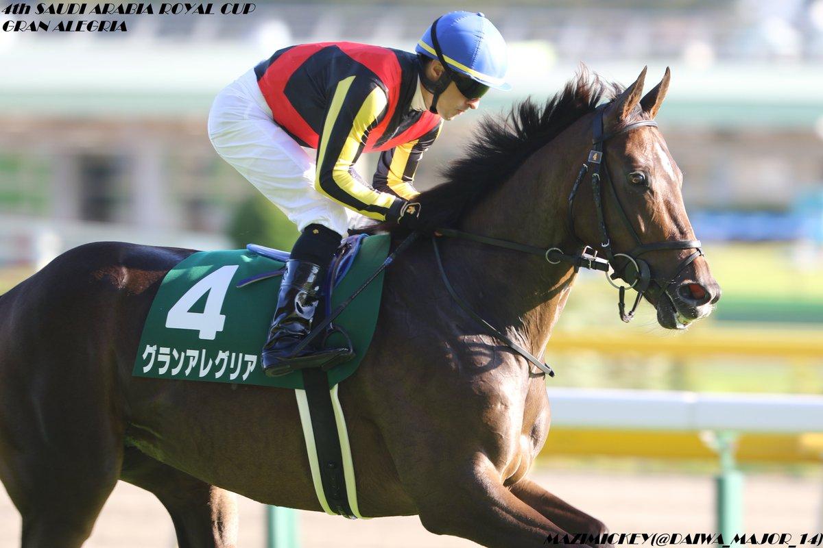 桜花賞2019の競馬予想分析!3つのデータから導く危険な人気馬