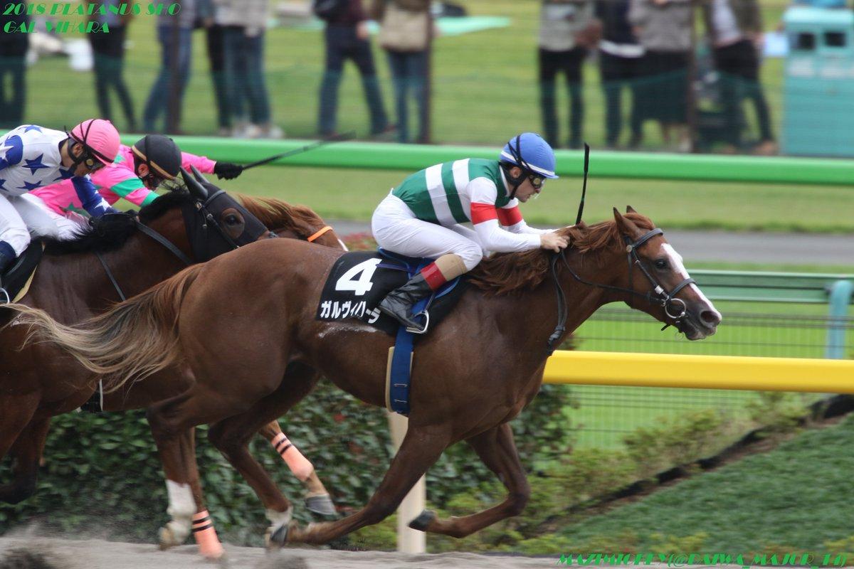 全日本2歳優駿2018の予想オッズ・人気と日程、出走予定馬と過去の傾向は?