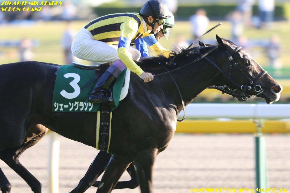 チューリップ賞2019の競馬予想分析!4つのデータから導く勝ち馬候補