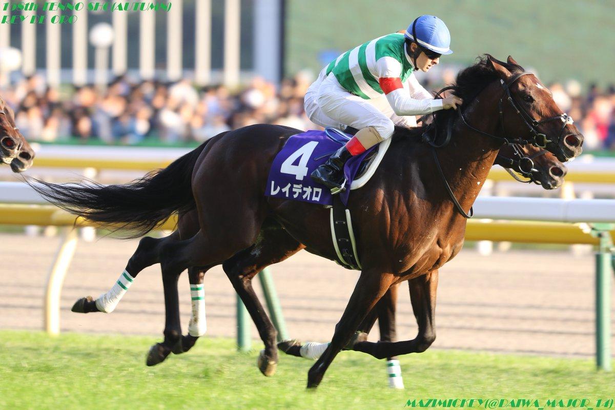 ドバイシーマクラシック2019の競馬予想!出走予定馬は?海外重賞展望