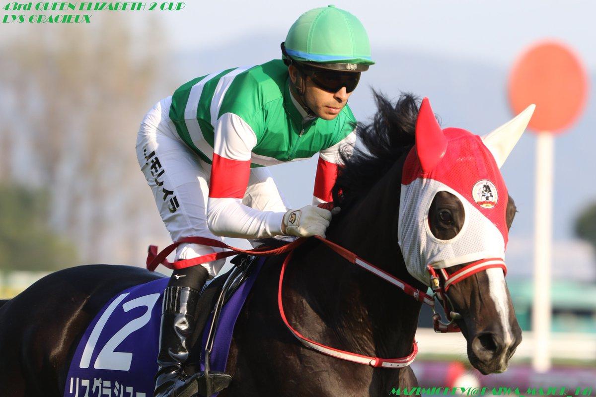 【香港国際競走】香港ヴァーズ2018の競馬予想分析!過去の血統と種牡馬の共通点とは?
