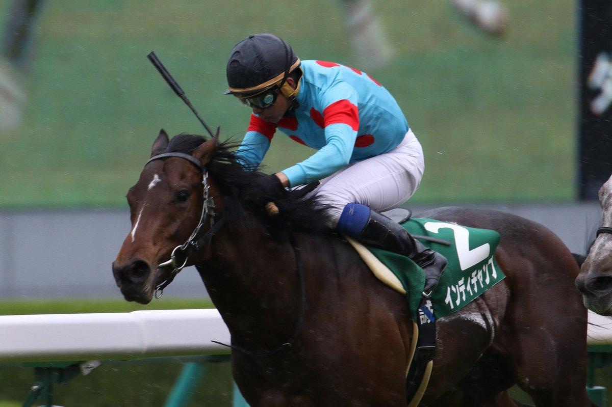 東京新聞杯2019の予想オッズ・人気と日程、出走予定馬一覧