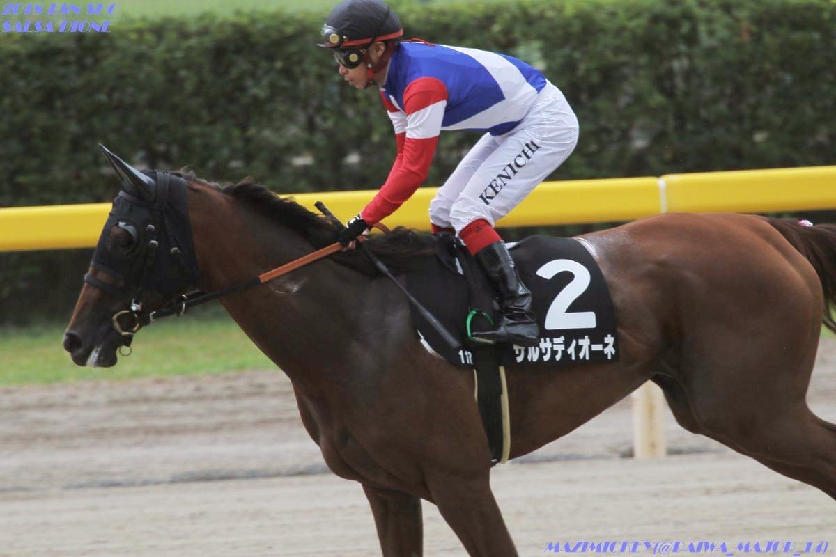 川崎記念2019の競馬予想分析!3つのデータから導く穴馬候補
