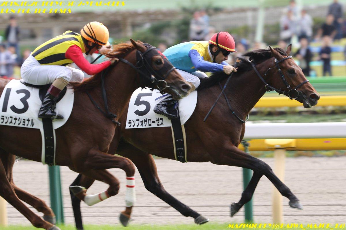 京成杯2019の競馬予想分析!4つのデータから導く勝ち馬候補
