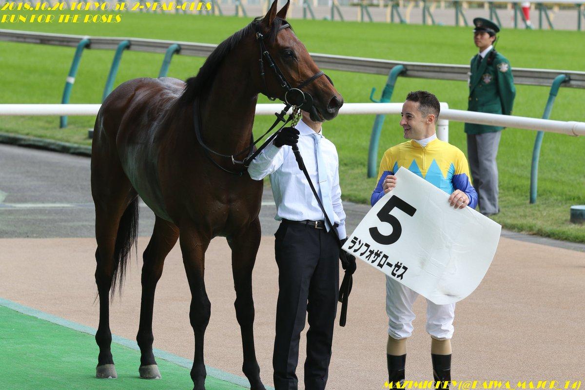 京成杯2019の予想オッズ・人気と日程、出走予定馬一覧