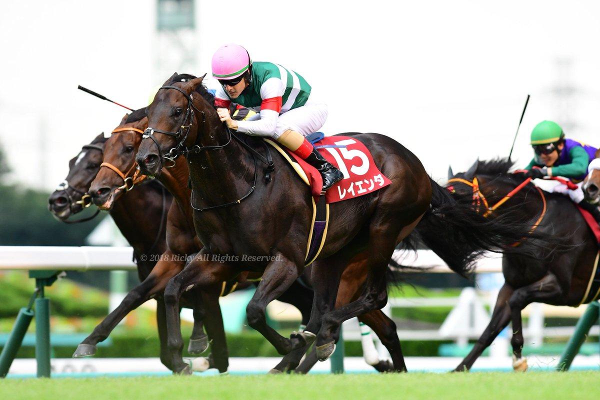 東京新聞杯2020の競馬予想分析!3つのデータから導く危険な人気馬