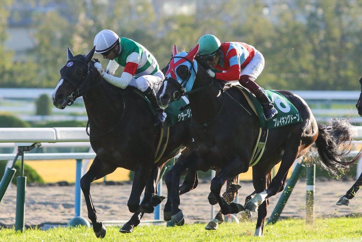 京都新聞杯2019の競馬予想分析!3つのデータから導く危険な人気馬