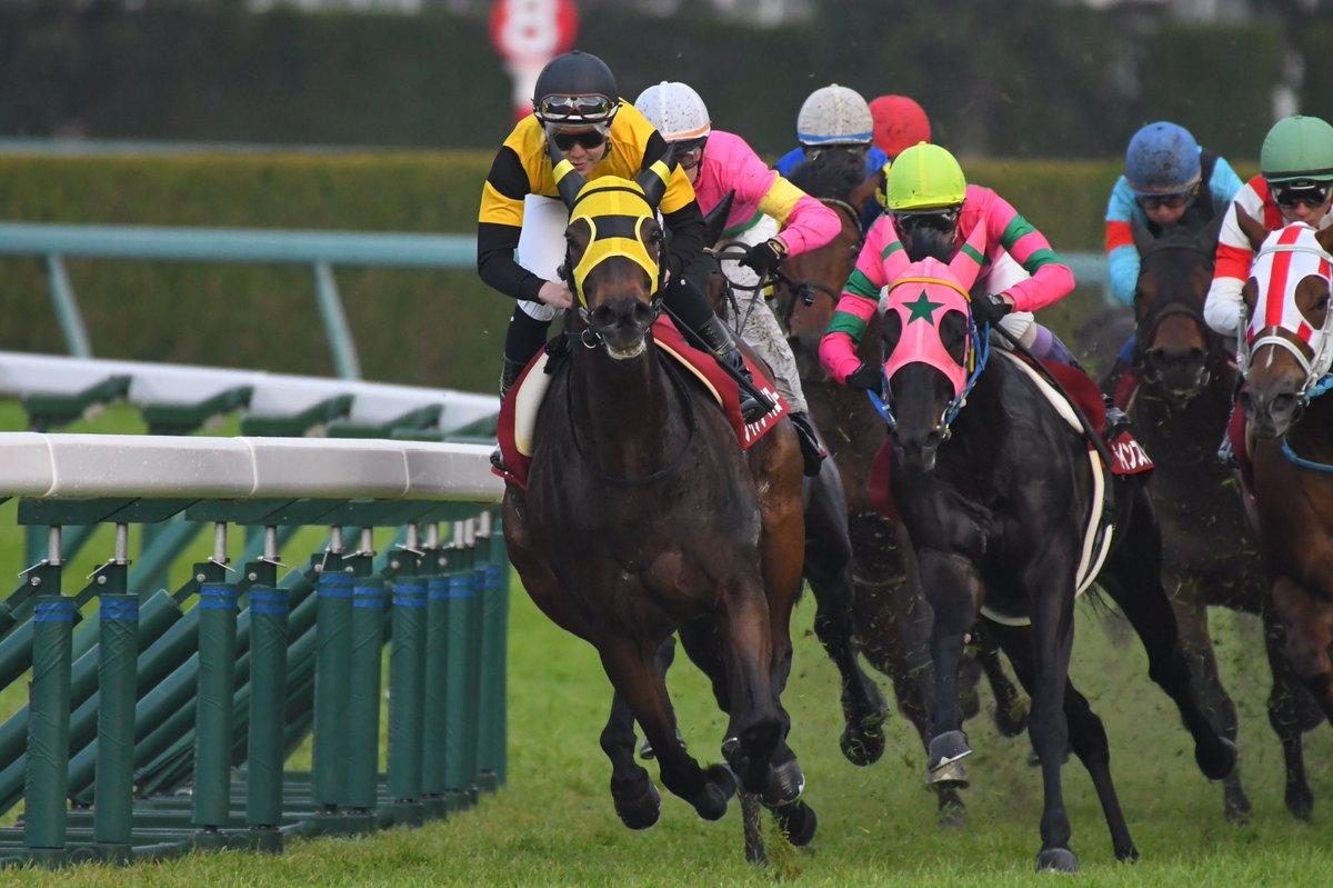 阪急杯2019の競馬予想分析!5つのデータから導く勝ち馬候補