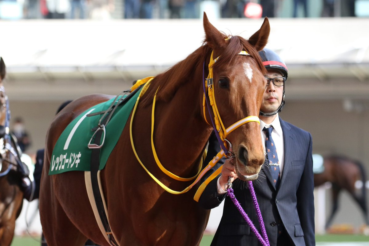高松宮記念2019の競馬予想分析!3つのデータから導く危険な人気馬