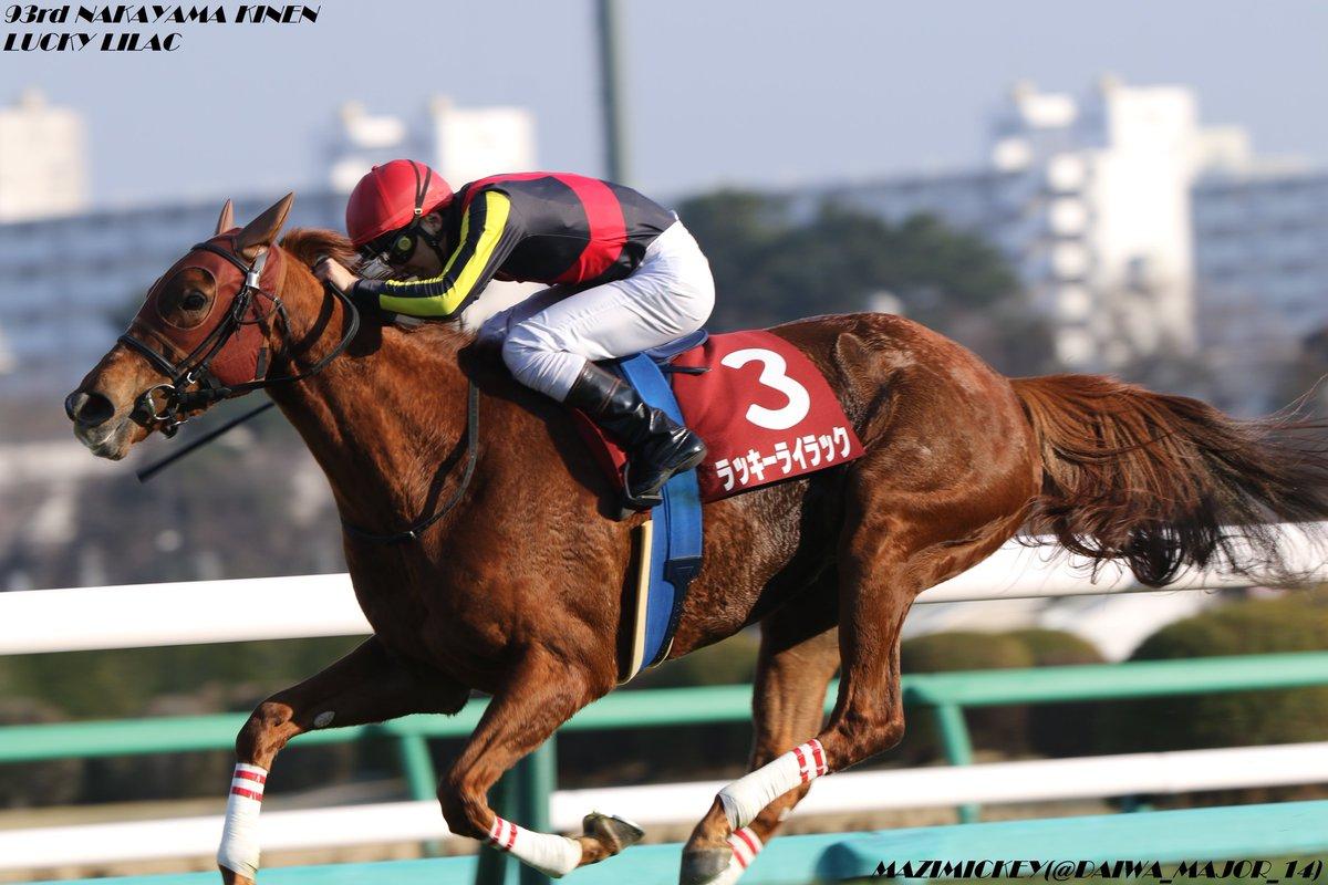 札幌記念2020の競馬予想分析!3つのデータから導く危険な人気馬