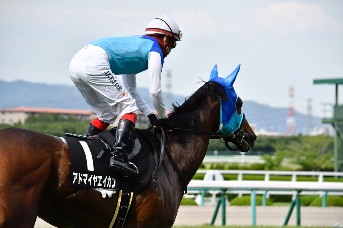 阪神大賞典2019の競馬予想分析!5つのデータから導く勝ち馬候補