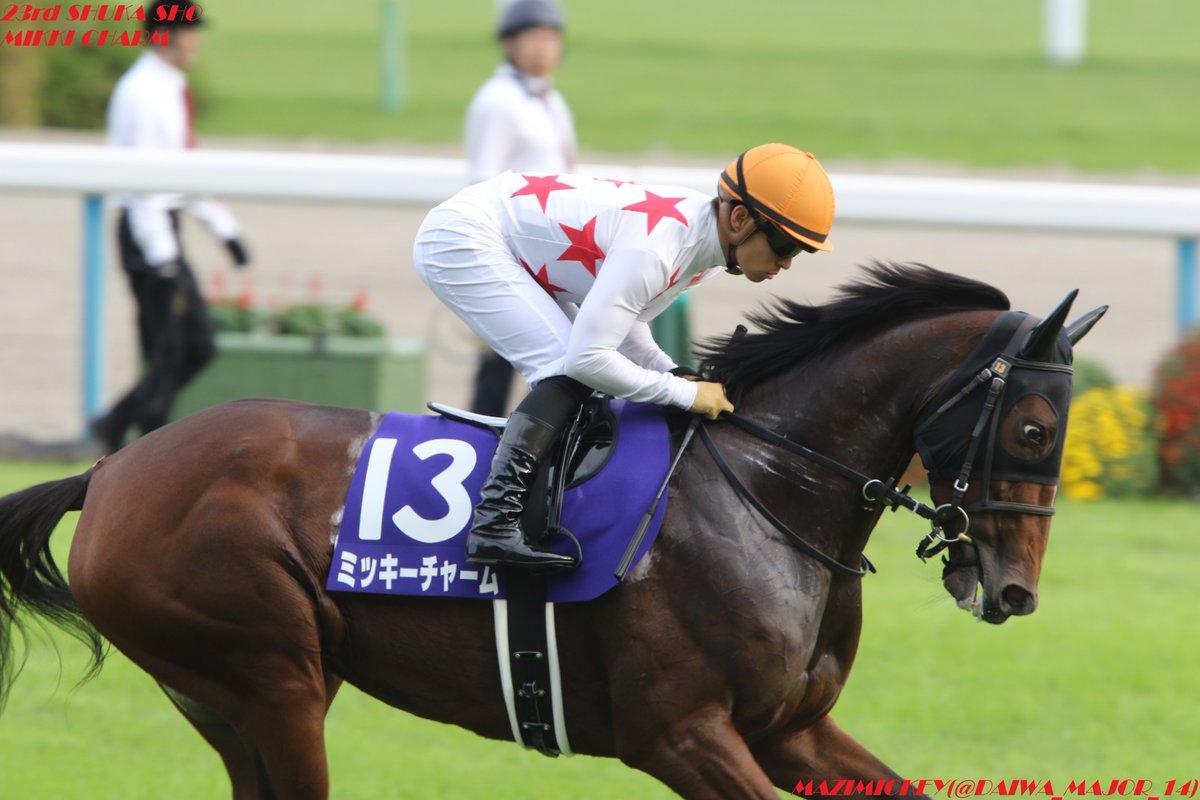 中山牝馬S2019の予想オッズ・人気と日程、出走予定馬一覧