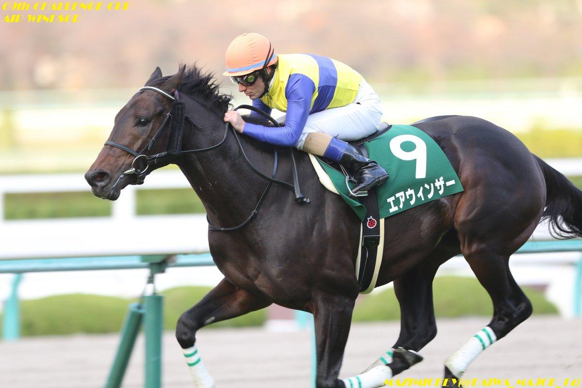 金鯱賞2019の競馬予想分析!3つのデータから導く危険な人気馬