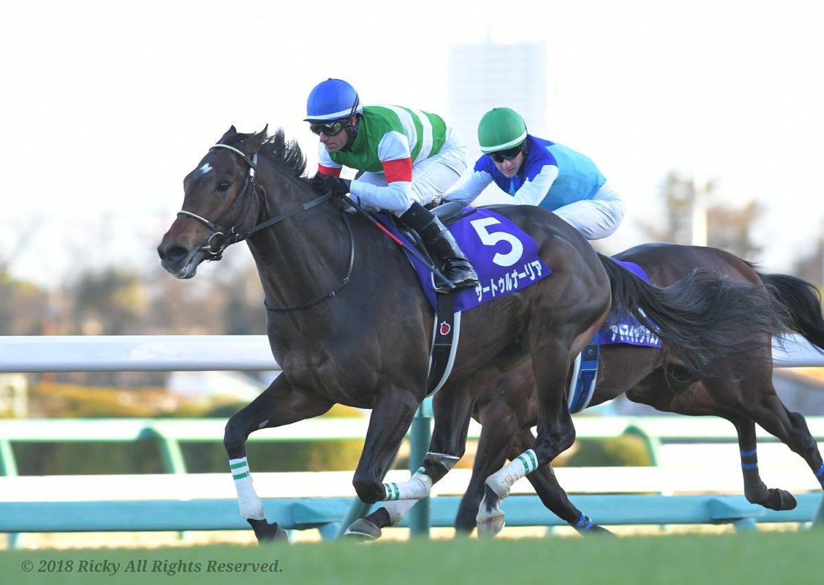金鯱賞2020の競馬予想分析!5つのデータから導く勝ち馬候補