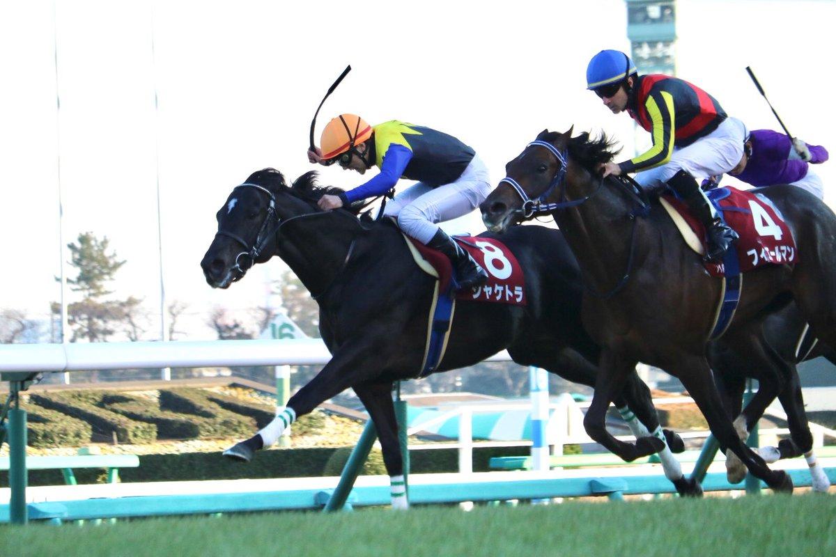 阪神大賞典2019の最新予想オッズ!日程・出走予定馬と人気の傾向は?/JRA