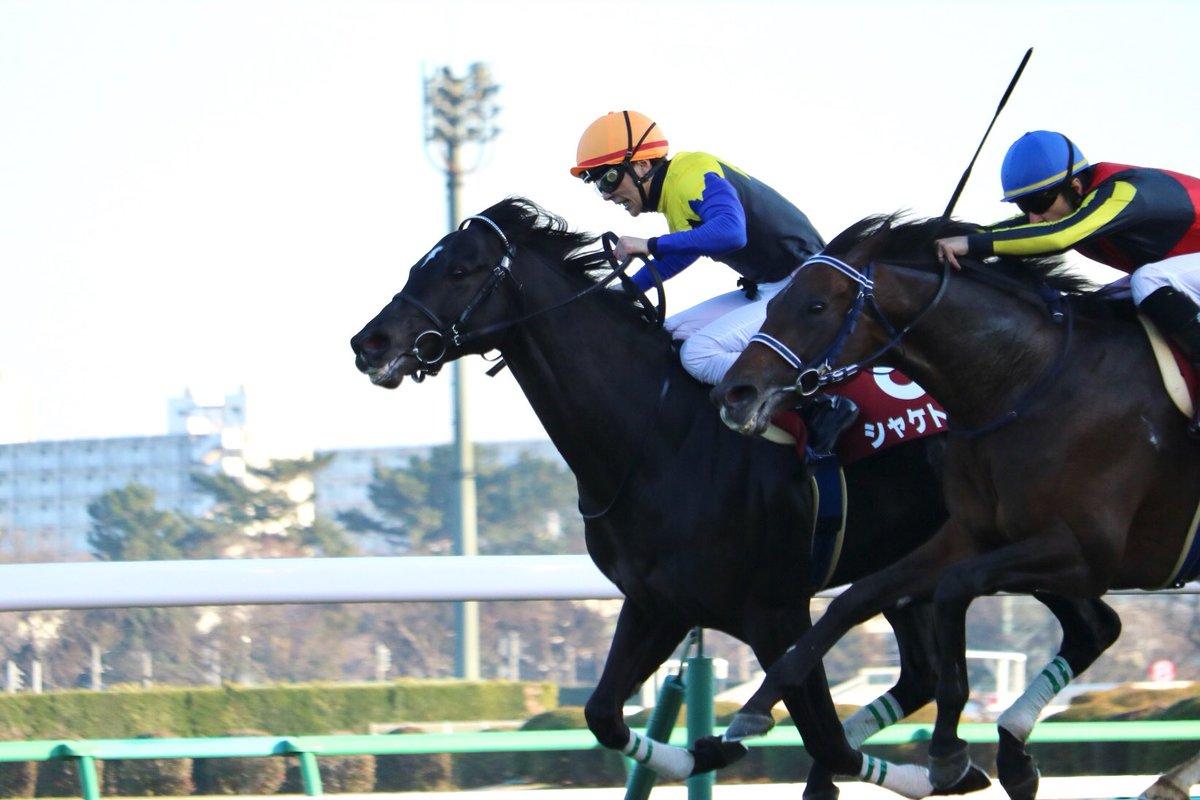 阪神大賞典2019の競馬予想分析!3つのデータから導く危険な人気馬