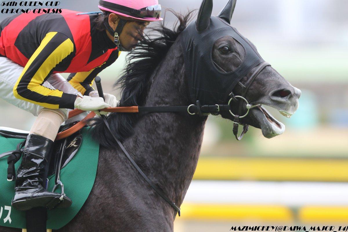 京都記念2020の競馬予想分析!3つのデータから導く危険な人気馬