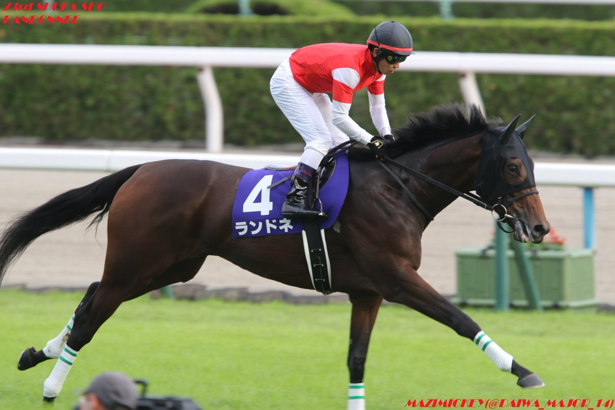 福島牝馬S2019の予想オッズ・人気と日程、出走予定馬一覧