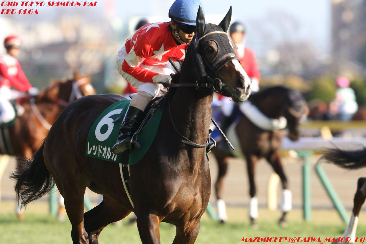 阪神牝馬ステークス2019の競馬予想分析!2つのデータから導く穴馬候補