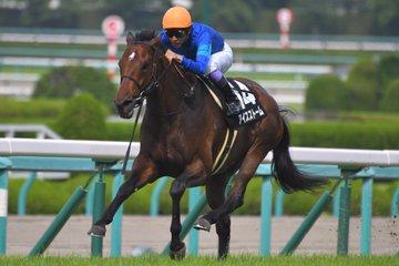 小倉記念2019の競馬予想分析!3つのデータから導く危険な人気馬