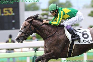 札幌2歳S2019の最新予想オッズ!日程・出走予定馬と人気の傾向は?/JRA