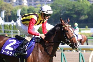 京成杯オータムハンデキャップ2019の競馬予想分析!3つのデータから導く危険な人気馬