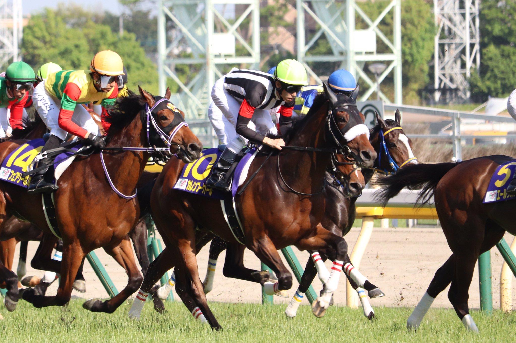 オールカマー2020の競馬予想分析!3つのデータから導く危険な人気馬